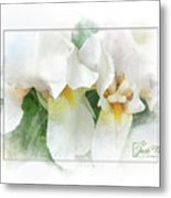 The Whispering Irises Metal Print