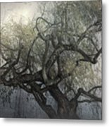 The Whispering Tree Metal Print