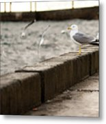 The White Bird Metal Print