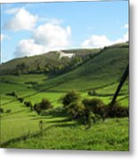 The White Horse Westbury England Metal Print