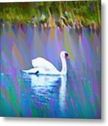 The White Swan Metal Print by Bill Cannon