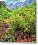 The Wildflowers Of Lundy Canyon Metal Print
