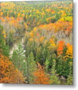 The Winding Manistee River Metal Print