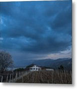 The Wineyard Metal Print