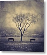 The Winter And The Benches Metal Print
