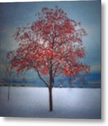 The Winter Berries Metal Print