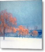 The Winter Blues Metal Print