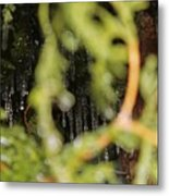The Winter Hides Beyond The Green Metal Print