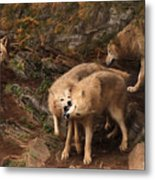 The Wolf Pack Metal Print