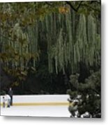 The Wollman Rink Metal Print