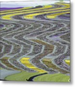 The Yellow Brick Road Metal Print