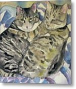 Theo And Franklin Metal Print