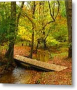 There Is Peace - Allaire State Park Metal Print