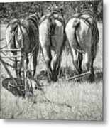They Wait Metal Print