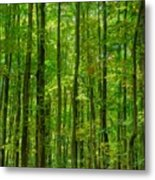 Thick Forrest Metal Print