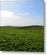 Thick Grass Field Abutting The Cliff's Of Moher In Ireland Metal Print