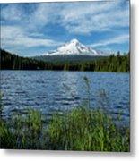 Thillium Lake And Mt Hood Metal Print