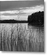 Thin Rain In The Evening Metal Print