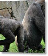 Thinking Gorilla Metal Print
