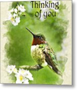 Thinking Of You Hummingbird Flora Fauna Greeting Card Metal Print