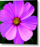 Thinking Of You ... Metal Print