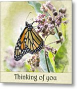 Thinking Of You Monarch Butterfly Greeting Card Metal Print