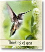 Thinking Of You Peaceful Love Hummingbird Greeting Card Metal Print
