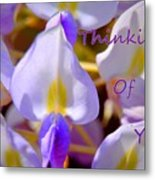 Thinking Of You Wisteria Metal Print