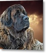 This Is Grizz Metal Print