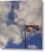 This Land Was Made For You And Me Metal Print