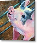 This Little Piggy Metal Print