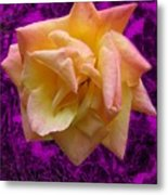 This Rose For You Metal Print