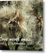 Thistle In Seed Metal Print