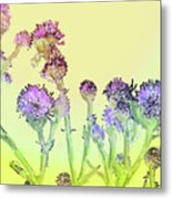 Thistles Under The Sun Metal Print