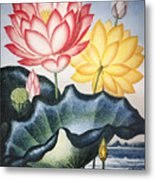 Thornton: Lotus Flower Metal Print