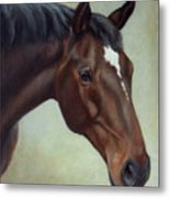 Thoroughbred Horse, Brown Bay Head Portrait Metal Print