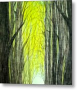 Though The Forest To The Light  Metal Print