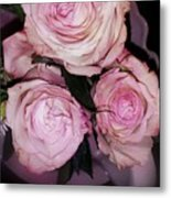 Three Beautiful Roses Metal Print