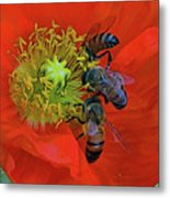 Three Bees At Lunch Metal Print