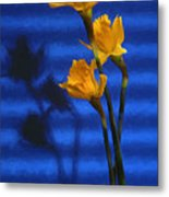 Three Cheers - Yellow Daffodils In A Red Bowl Metal Print