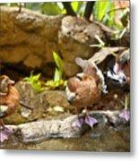 Three Ducks Metal Print