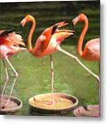 Three Flamingos Metal Print