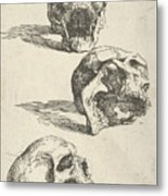 Three Human Skulls Metal Print