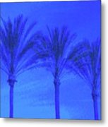 Three Palms And One Flag Metal Print
