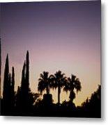 Three Palms In California At Sunset Metal Print