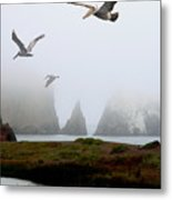 Three Pelicans In Portrait Metal Print by Wingsdomain Art and Photography
