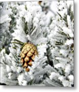 Three Pinecones Metal Print