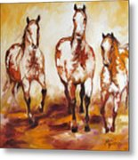 Three Pinto Indian Ponies Metal Print