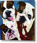 Three Playful Bullies Metal Print