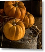 Three Pumpkins On A Bucket Metal Print